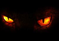 Luz, Câmera, Reação – Vídeo Mais Assustador