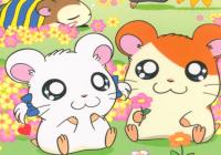 Expresso do Oriente – Animes para assistir com seus filhos!