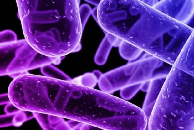 bacterias-comedoras-de-carne-02