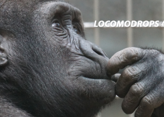 Locomodrops #24 – Perguntas Filosóficas Sem Respostas